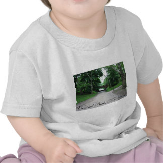 Central Park, New York 2 T Shirt