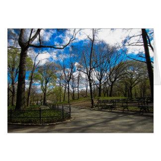 Central Park NYC Karte