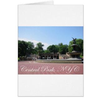 Central Park, NYC Karte