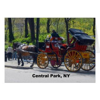 Central Park, Pferd und Wagen Karte