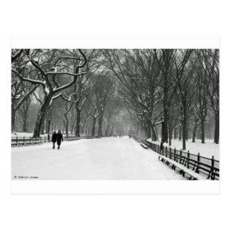 Central Park Postkarte