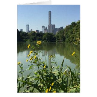 Central Park See-Blumen-Wolkenkratzer New York NYC Karte