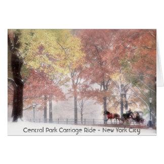 Central Park-Wagen-Fahrt - New York Karte