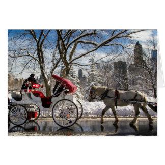 Central Park-Wagen-Pferde Karte
