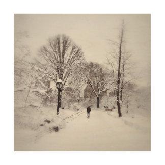 Central Park-Weiß heraus Holzleinwand