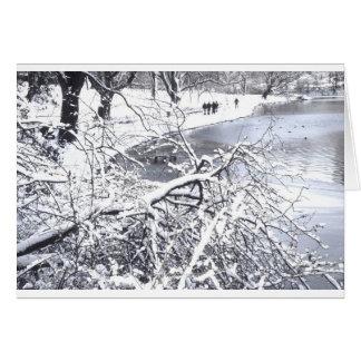Central Park-Winter See Karte