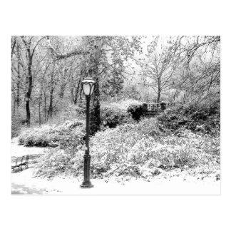 Central- Parkwinter-Schnee-LandschaftsFoto Postkarte
