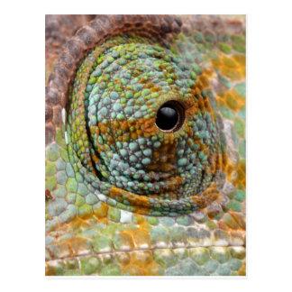 Chamäleon-Augen-Mod-stilvolles Tier Postkarte