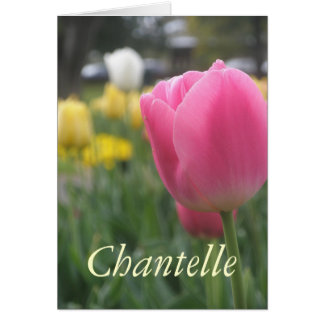 Chantelle Karte