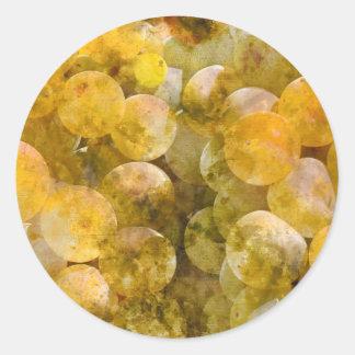 Chardonnay-Trauben auf der Rebe Runder Aufkleber