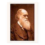 Charles Darwin gegen 1874 Postkarten