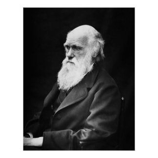 Charles Darwin-Porträt Poster