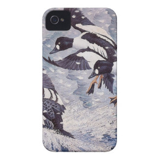Charles Tunnicliffe Goldeneyes-Enten iPhone 4 Hüllen
