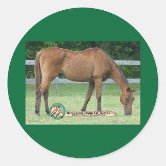 Charlie-Pferdeaufkleber Runde Sticker