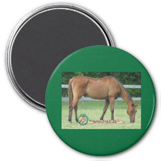 Charlie-Pferdemagnet Runder Magnet 7,6 Cm