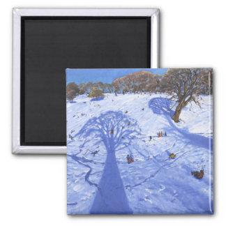 Chatsworth Winterbaum beschattet 2013 Quadratischer Magnet