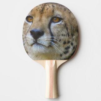 cheetah-21.jpg tischtennis schläger