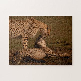 Cheetah-Liebe-Puzzlespiel Puzzle