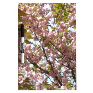 cherry blossom! memoboard