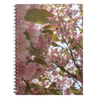 cherry blossom! spiral notizblock
