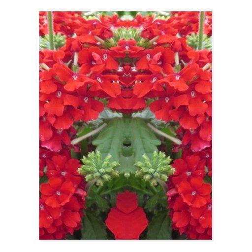 CherryHILL SPASS Blumen-Blumenstrauß NVN219 Postkarte