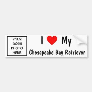 Chesapeake Bay-Retriever Autoaufkleber