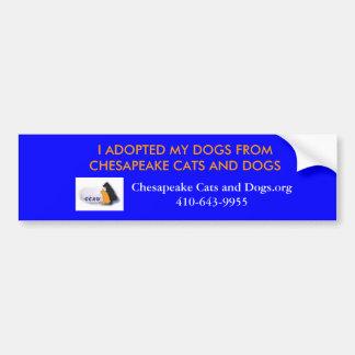 Chesapeake-Katzen- und HundeAutoaufkleber Autoaufkleber