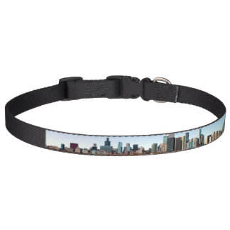 Chicagoskyline-Hundehalsband Haustierhalsband