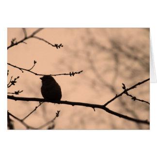 Chickadee auf Niederlassung in der Twilight Karte