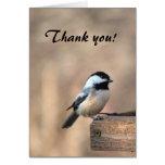 Chickadee danken Ihnen