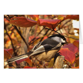 Chickadee-Vogel mit rosarotem Herbst-Blätter Karte