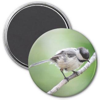 Chickadeephotographie Runder Magnet 7,6 Cm