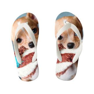 chihuahua flip flops