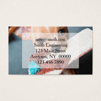 chihuahua flip flops visitenkarte