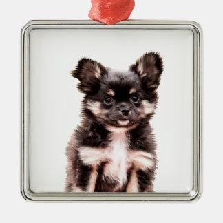 Chihuahua-Hündchen Silbernes Ornament