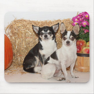 Chihuahua im Fall Mousepad