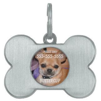 Chihuahua-Knochen-Haustier-Umbau mit Foto Tiermarke