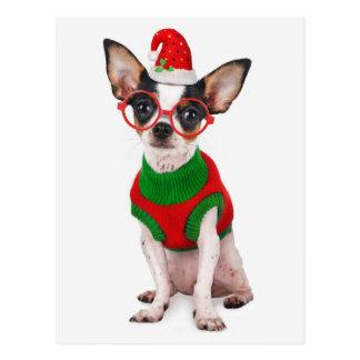 Chihuahua mit Weihnachtsmannmütze und Gläsern Postkarte