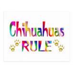 Chihuahua-Regel Postkarte