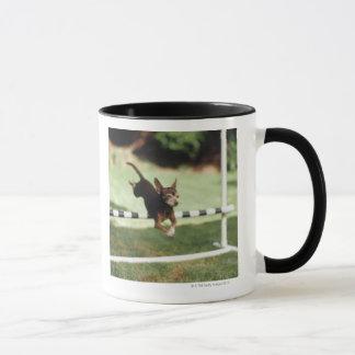Chihuahua-springende Hürde Tasse