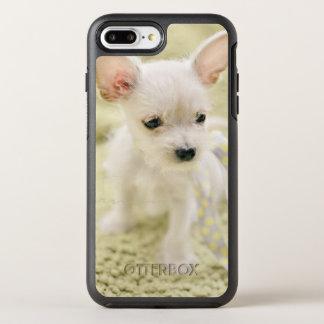 Chihuahua und maltesischer Welpe OtterBox Symmetry iPhone 8 Plus/7 Plus Hülle