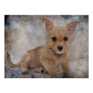 Chihuahua/Yorkie Welpe Fotodruck