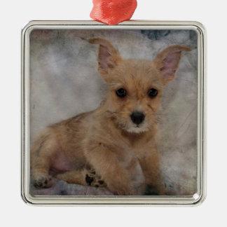 Chihuahua/Yorkie Welpe Quadratisches Silberfarbenes Ornament