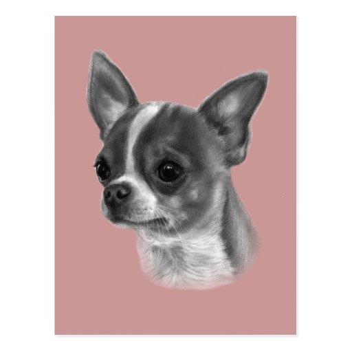 Chihuahua-Zeichnen Postkarten