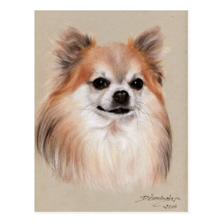 Chihuahua-Zeichnen Postkarte