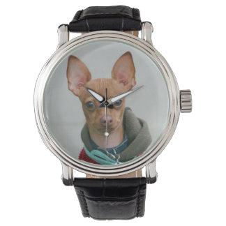 Chihuahuahund Armbanduhr