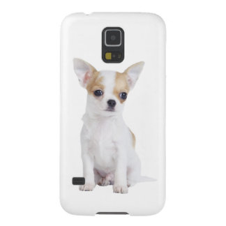 Chihuahuawelpe Samsung Galaxy S5 Hülle