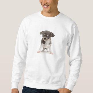 Chihuahuawelpe stehend vom weißen Hintergrund Sweatshirt