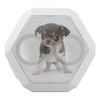 Chihuahuawelpe stehend vom weißen Hintergrund Weiße Bluetooth Lautsprecher