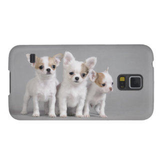 Chihuahuawelpen Samsung Galaxy S5 Cover